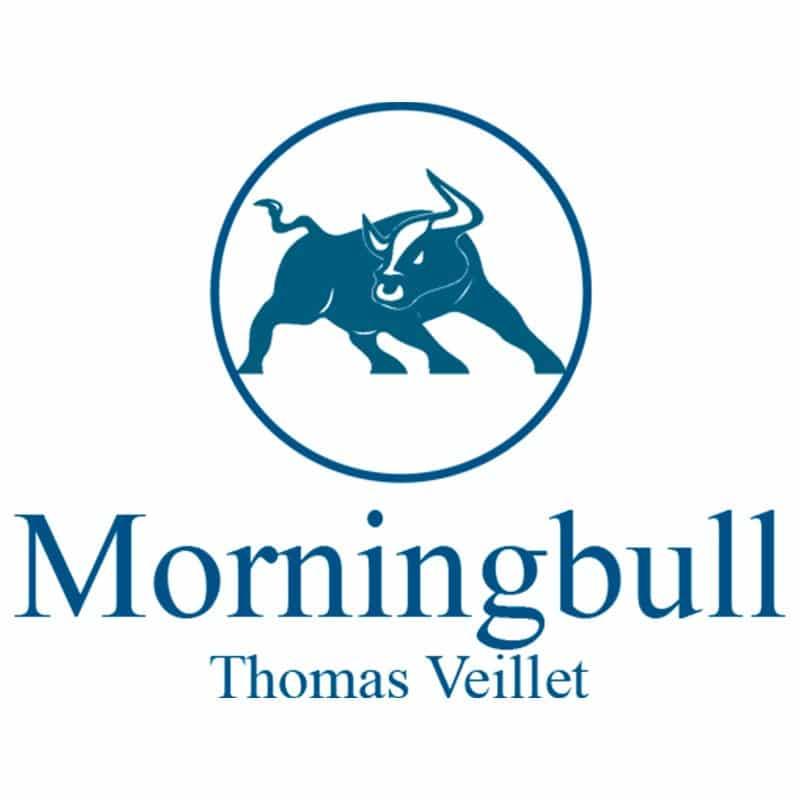Logo Morningbull V2 big