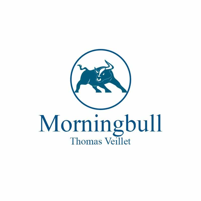 Logo Morningbull V2