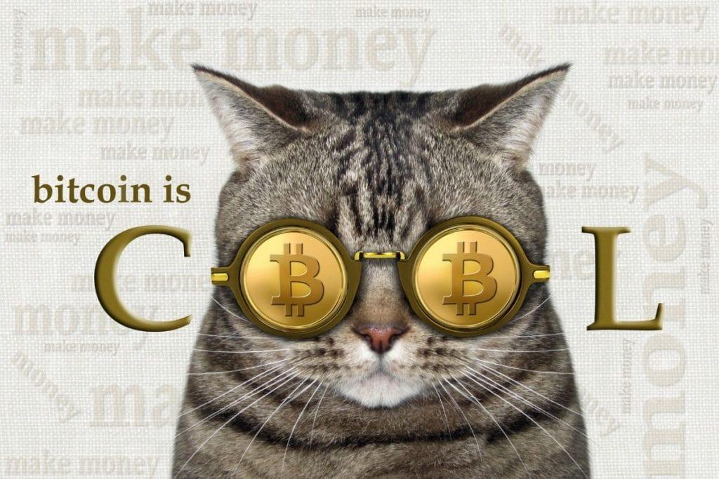 Janet Yellen se trompe sur le Bitcoin